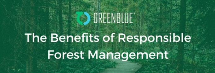 forest with GreenBlue logo superimposed